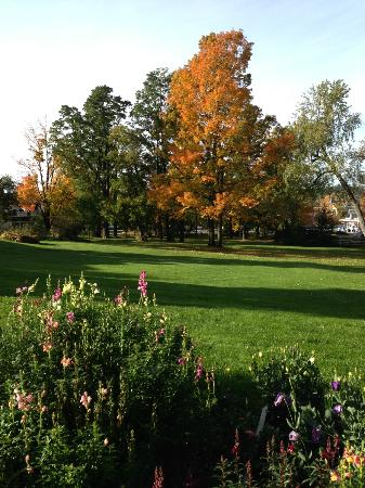 Swift House Inn: Lots of room for fall walks and gazing