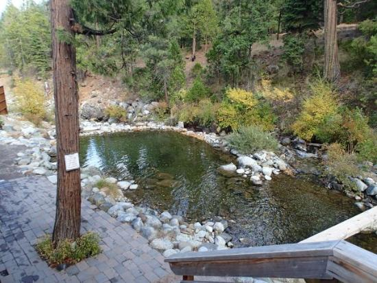 Stewart Mineral Springs Resort: Plung Pool