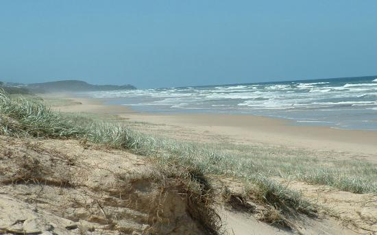 Peregian Beach, ออสเตรเลีย: A 2 minute stroll to the Beach