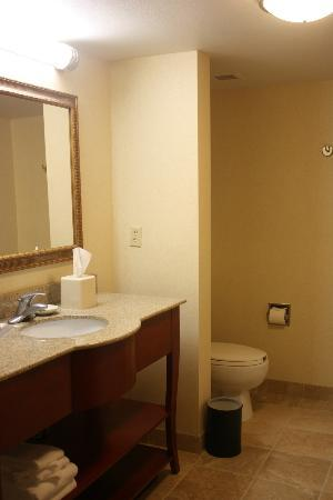 Hampton Inn & Suites Fort Myers - Colonial Blvd: bathroom