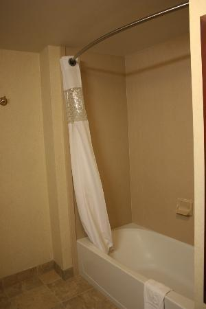 Hampton Inn & Suites Fort Myers - Colonial Blvd: bath/douche