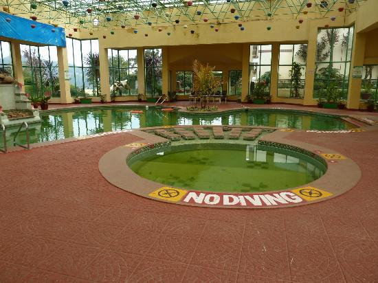 Gem Park-Ooty: Pool - it really is that green