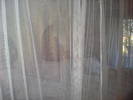 Serengeti Serena Safari Lodge: our beds surrounded by mosquito nets