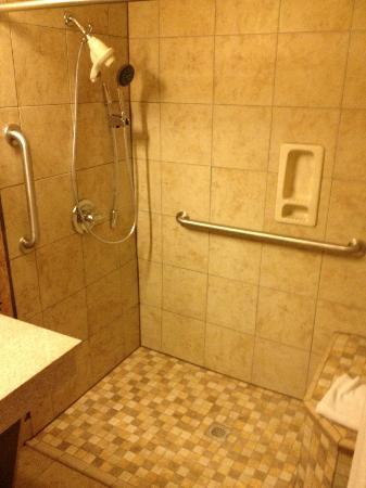Wingate by Wyndham Sulphur: wheel in shower