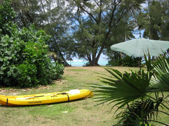 Paradise - Captain James Retreat, Raro