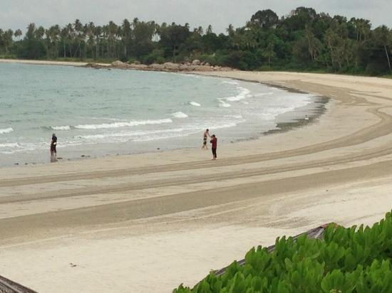 Angsana Bintan: Frequently groomed beach