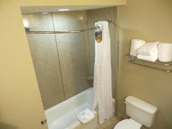 Holiday Inn Express Crystal River: Badkamer