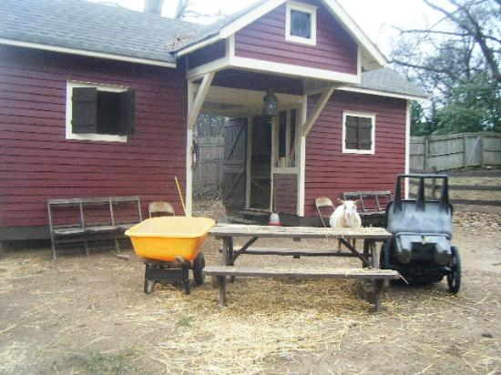 The Social Goat Bed & Breakfast: Super cute barn!