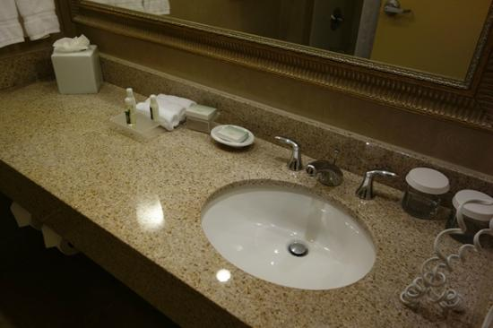 Homewood Suites by Hilton Seattle Downtown: Bathroom