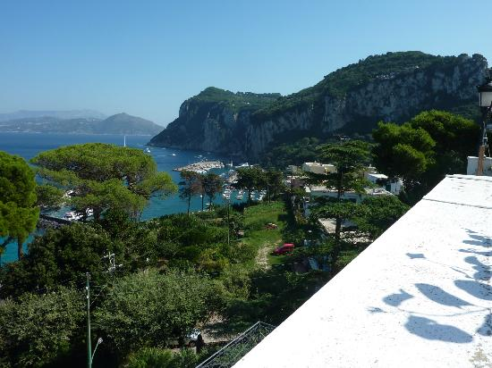 Hotel Excelsior Parco: View from terrace