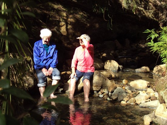 Go Great Barrier Island - Day Tours: Foot spa
