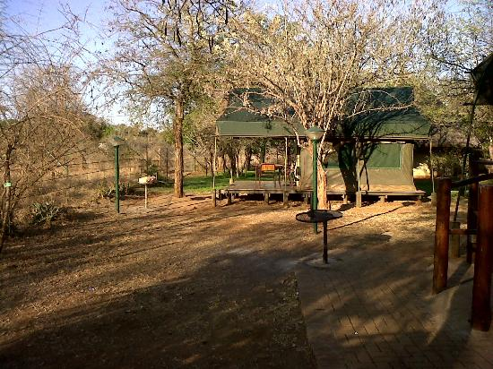 Crocodile Bridge Rest Camp: Safari Tents at Crocodile bridge Camp - Kruger