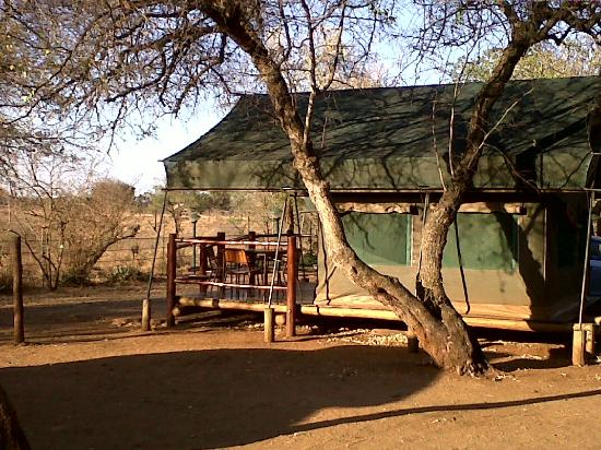 Crocodile Bridge Rest Camp: Safari Tents on the fenceline at Crocodile Bridge-Kruger