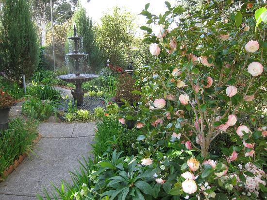 Briardale Bed & Breakfast: A beautiful garden to relax in