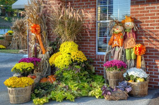 Mountain Aire Motor Inn: some of the autumn decorations