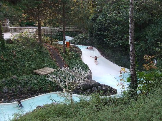 Reindeer Picture Of Center Parcs Longleat Forest Warminster Tripadvisor