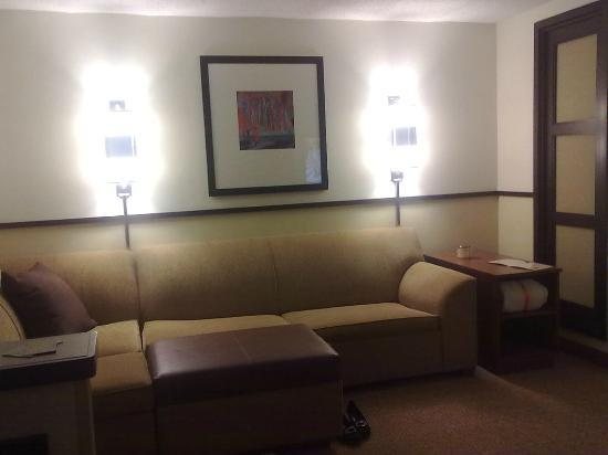 Hyatt Place Indianapolis/Keystone: Sofa sleeper and ottoman