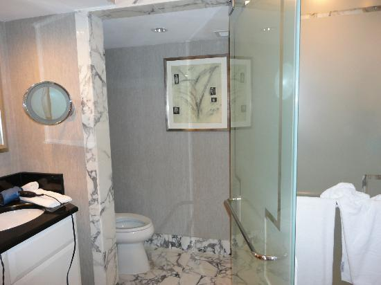 Ritz-Carlton South Beach: Separate toilet area (with phone!)