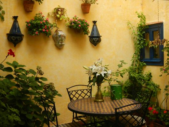 Baraka Bed and Breakfast: The interior terrace
