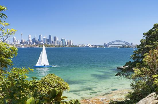 View of Sydney Harbour from Bradley's Head, Mosman. Credit: Hamilton Lund