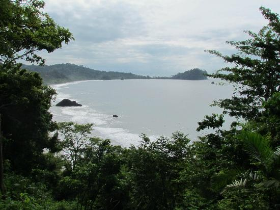 Arenas del Mar Beachfront and Rainforest Resort, Manuel Antonio, Costa Rica: View from the terrace near the swimming pool