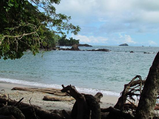 Arenas del Mar Beachfront and Rainforest Resort, Manuel Antonio, Costa Rica: Beach at nearby Manuel Antonio National Park