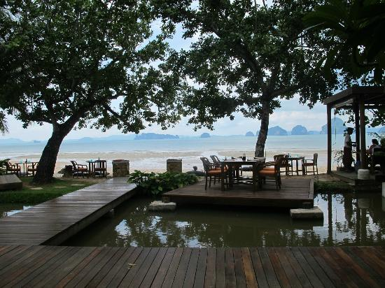 The Tubkaak Krabi Boutique Resort: This is the view from the restaurant. The pond is loaded with koi, which we fed each morning.