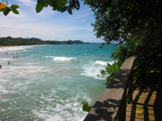 Red Frog Beach Island Resort & Spa: Great for swimming....