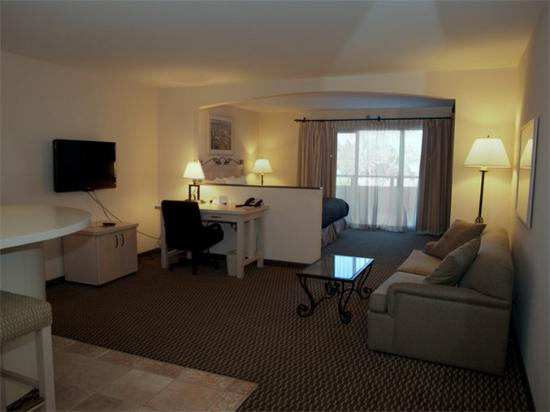 BEST WESTERN Encinitas Inn & Suites at Moonlight Beach: Guest Room