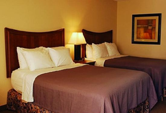 Trade Winds Central Inn: Guest Room