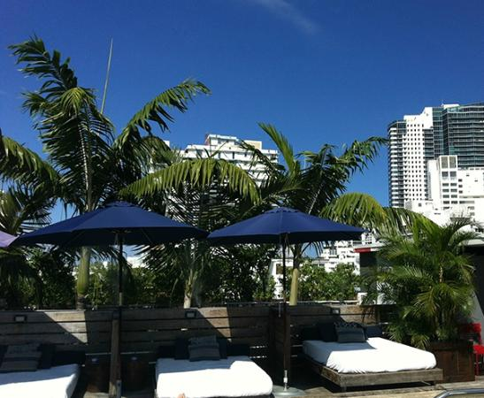 Catalina Hotel & Beach Club: Free cabanas at roof top pool