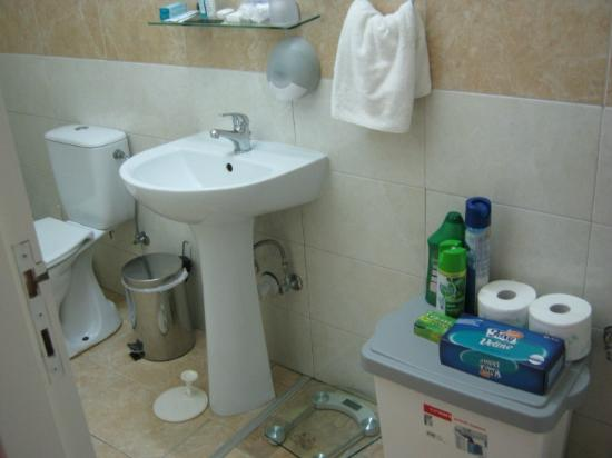 Apollonia Holiday Apartments: Well appointed bathroom