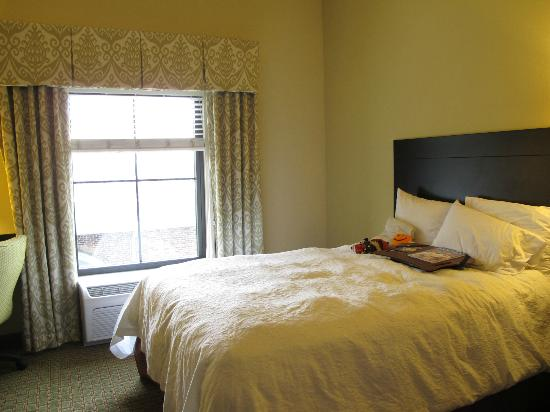 Hampton Inn & Suites Gainesville-Downtown: Gorgeous rooms with super comfy beds.