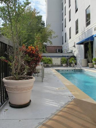 Hampton Inn & Suites Gainesville-Downtown: Pool area