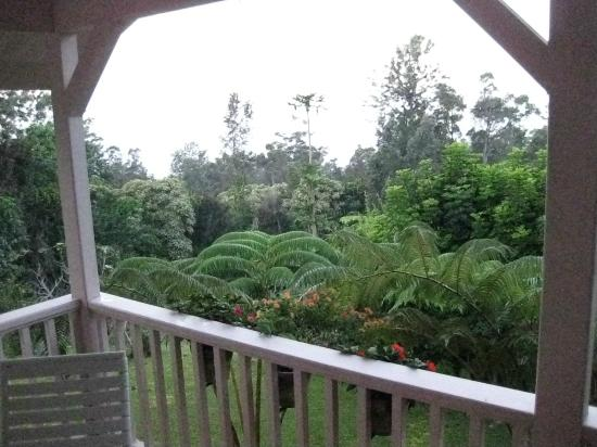 Nancy's Hideaway: view from porch