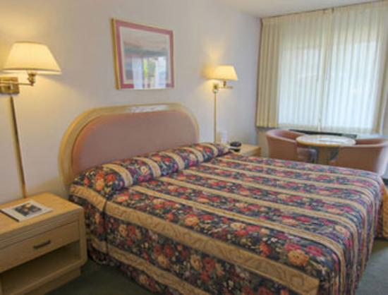 Travelodge Berkeley: King Guest Room