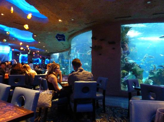 Watch the fish while you eat. - Picture of Aquarium ...