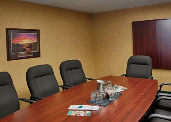 Quality Hotel & Suites Woodstock: Boardrooms