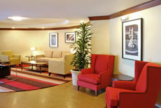 Capital Circle Inn & Suites: Lobby View