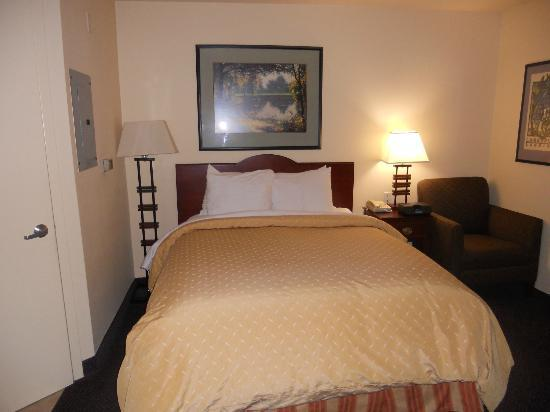 Larkspur Landing Bellevue- An All-Suite Hotel: Studio Room- Queen Bed and iPod Dock