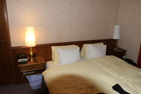 Swiss Inn Hotel &amp; Apartments: Basic bedroom