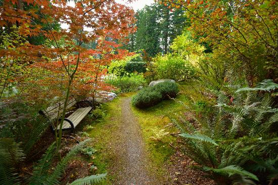 Deer Fern Bed and Breakfast: Deer Fern Garden Path