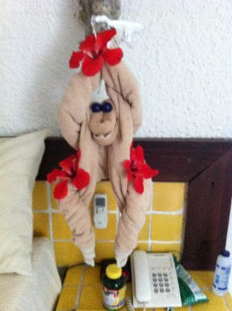 Hotel Casa del Mar Cozumel: Monkey made by housekeepers