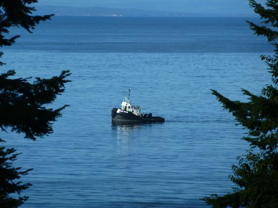 Deer Fern Bed and Breakfast: Tug pulling log booms past Deer Fern
