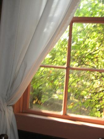 Lake Lucerne Cottages: view from bedroom in gingerwood