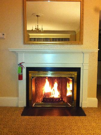The Lenox Hotel: Gorgeous wood-burning fireplace