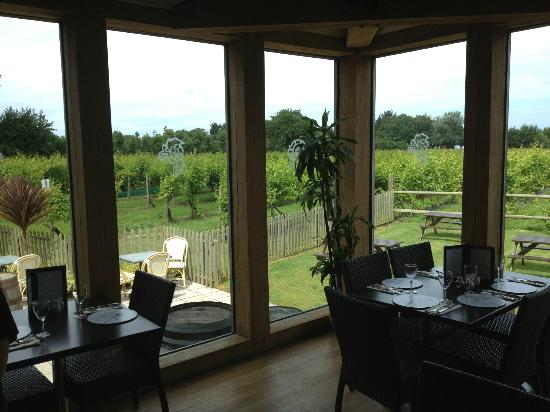 St. Mary, UK: Cafe overlooking vineyard