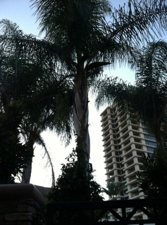 Harrah's Resort Southern California: view from our private patio