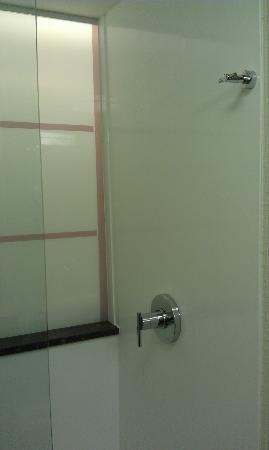Red Roof Inn Locust Grove: Shower
