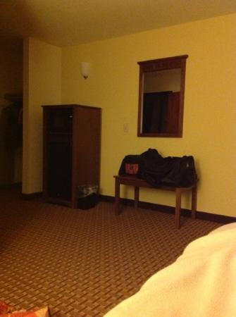 ‪‪Mountain Inn & Suites Airport‬: Deluxe King room with fridge and microwave‬